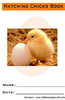 Chicken Hatching Observation Book