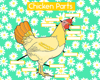 Chicken & Egg Labeling Poster