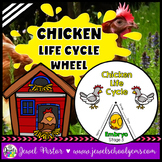 Animal Life Cycle Activities (Chicken Life Cycle Craft)