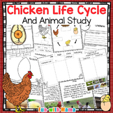 Chicken Life Cycle Worksheets + Chicken Science Theme