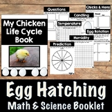 Chicken Life Cycle Book- Math and Science Integration for Hatching Eggs
