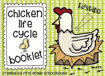 Chicken Life Cycle Booklet by First Grade Schoolhouse | TpT