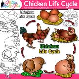 Chicken Life Cycle Clip Art | Teach Farm Animals, Habitats, & Adaption