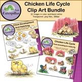 Chicken Life Cycle Clip Art Bundle