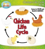 Chicken Life Cycle Clipart {Zip-A-Dee-Doo-Dah Designs}