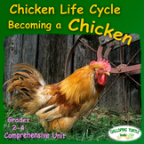 Chicken Life Cycle - Comprehensive Unit