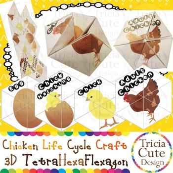 Chicken Life Cycle Craftivity –3D TetraHexaFlexagon Kaleidocycle(Science Lesson)