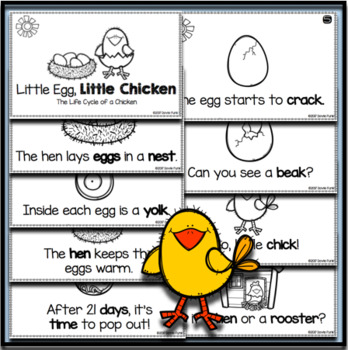 Chicken Life Cycle Emergent Reader Booklet