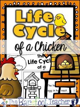 Chicken Life Cycle Emergent Reader