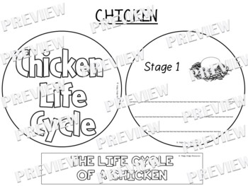 Chicken Life Cycle Factball and Comprehension Sheet