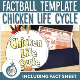 Chicken Life Cycle Factball and Fact Sheet