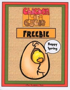 Chicken Life Cycle Frrebie
