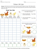 Life Cycle of a Chicken {Dollar Deals}