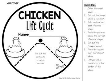 Chicken Life Cycle Interactive Wheel Craft FREEBIE! by Curriculum Castle