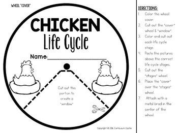 Chicken Life Cycle Interactive Wheel Craft FREEBIE!