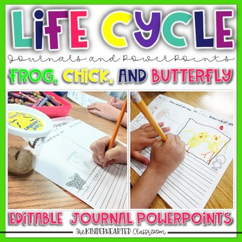 Chicken Life Cycle Journal and Powerpoint