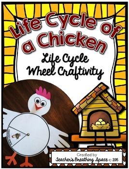 Chicken Life Cycle --- Life Cycle Wheel --- Chicken Life Cycle Craftivity