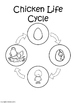 Chicken Life Cycle {Life Cycle of a Chicken Sequencing Car