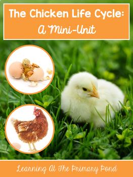 Chicken Life Cycle Unit for Preschool, Kindergarten, or First Grade