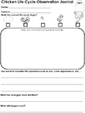 Chicken Life Cycle Observation Journal and Worksheets