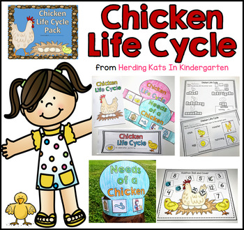 Chicken Life Cycle With Observation Journal