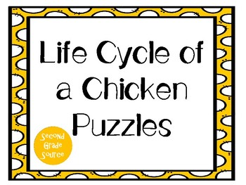 Chicken Life Cycle Puzzles *Freebie!*