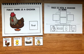 Chicken Life Cycle Sequencing Activities