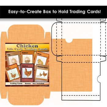Chicken Life Cycle - Trading Cards