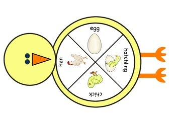 Chicken Life Cycle Unit (Canadian)