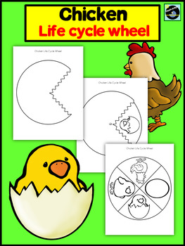 Chicken Life Cycle Wheel