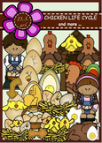Chicken Life Cycle and more... Digital Clipart (color and