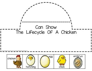 Chicken Lifecycle Crown