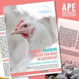 Chickens Raised for Meat in Australia: Chicken Welfare in