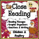Chicken & Poultry Life Cycle Unit {Reading, Questions, Voc
