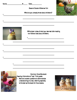 Chicken Research Sheet