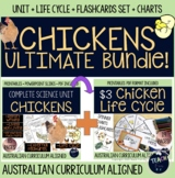Chicken Unit Ultimate Bundle - life cycle flashcards lessons reports charts