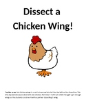 Chicken Wing Dissection Lab