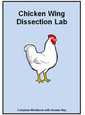 Chicken Wing Dissection- Types of Muscles, Tendons, Ligaments