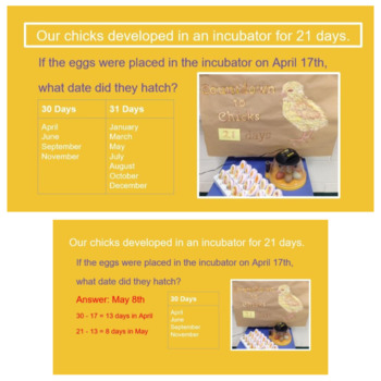 Chicken Word Problems 3rd Grade and 4th grade