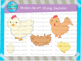 Chicken life cycle clip art