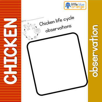 Chicken life cycle observation sheet