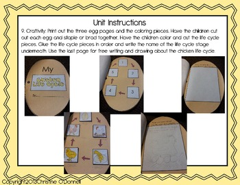 Chicken life cycle: teacher book, minibook, craftivity, anchor chart+