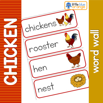 Chicken life cycle word wall