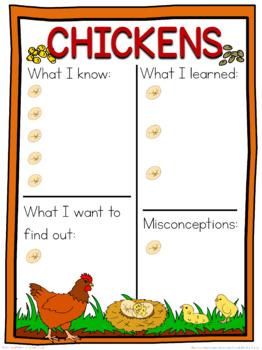 Chicken  schema  worksheet