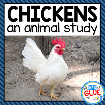 Chickens: An Animal Study