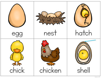 Chickens Writing Center