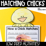 Chicken Life Cycle Activities (Chick Hatching)