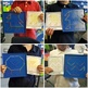 Chicks Life Cycle Geoboard Shapes