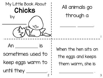 Chicks Nonfiction Close Reading & Visual Vocabulary