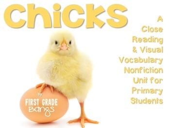 Chicks Nonfiction Close Reading & Visual Vocabulary